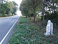 Old Milepost - geograph.org.uk - 1508235.jpg