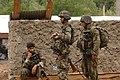 Operation Rock Axe DVIDS52378.jpg