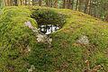 Opferstein bei Langschlag Schalenstein 03 2014-08 NDM ZT-098.jpg
