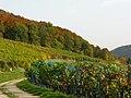 Osterfingen 13.10.2008 13-13-35.jpg