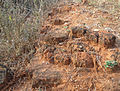 Outline of Stupa Brick Remnants at Pellikonda 02.jpg