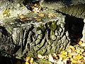 Périgueux remparts ruines pierres (3).JPG