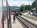 Pătârlagele station 2017 1.jpg