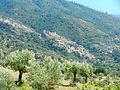 Panoramica di Cleto.JPG