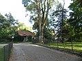 Park, Klasztor w Staniątkach.jpg