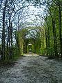 Passeggiata nel giardino storico.jpg
