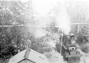 Conecuh River - Train unloading logs into Escambia River in the 1890s