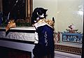 Photograph of Socks the Cat Peeking into his Christmas Stocking- 12-21-1993 (6461512959).jpg