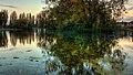 Pickering Park IMG 6712 - panoramio.jpg