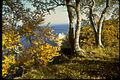 Pictured Rocks National Lakeshore PIRO0708.jpg