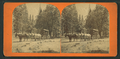 Pioneer Stage, Yosemite Valley, from Robert N. Dennis collection of stereoscopic views.png