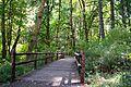 Plunkett Creek Bridge.jpg