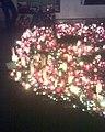 Podloubí - půlsrdce 18. 12. 2011 půlnoc, den úmrtí VH.jpg
