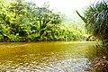Porarari river - panoramio.jpg