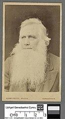 Rev. R. Ellis, 'Cynddelw'