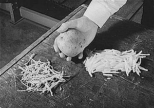 Food drying - A whole potato, sliced pieces (right), and dried sliced pieces (left)