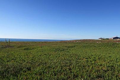 Praia de Santo André Chorões
