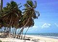 Praia de Zumbi 004.jpg