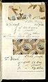 Printer's Sample Book, No. 19 Wood Colors Nov. 1882, 1882 (CH 18575281-45).jpg