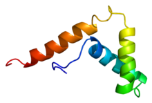 Protein SOX13 PDB 1i11.png