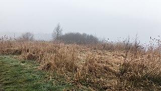 Put van Nederhorst in de mist. 28-02-2021. (d.j.b) 07.jpg