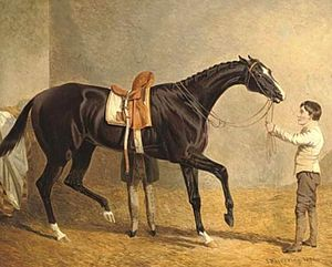 Queen of Trumps - Queen of Trumps in a stable, with two grooms by John Frederick Herring