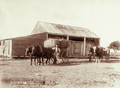 Queensland State Archives 1036 Chaff carting at Blantyre Boonah c 1896.png