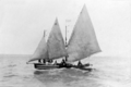 Queensland State Archives 5756 Dauarti canoe belonging to Bamaga Family Saibai Torres Strait Island June 1931.png