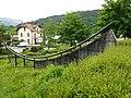 Queue de poisson @ Parc du Val Vert @ Seynod (50884897277).jpg