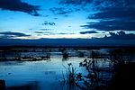Quiet dusk over Lake Naivasha (5232083375).jpg