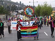 Quito March Bandera CONAIE 2