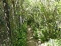 Réserve Naturelle du Lez (2396766363).jpg