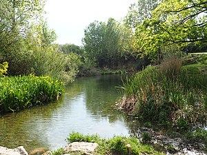 Río Palancia a su paso por el Paraje El Sargal. Viver, Alto Palancia, Castellón.jpg