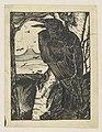 Raaf op een berkeboom, RP-T-1981-362.jpg