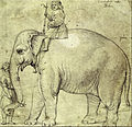 Raffaello Sanzio (school of) - The Elephant Hanno - Google Art Project.jpg