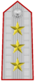 Rank insignia of generale d'esercito of the Italian Army (1908).png