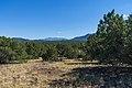 Red Mountain Trail No. 159 (28730508741).jpg
