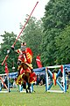 Red and yellow knight (9185729455).jpg