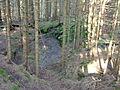 Reste eines mittelalterlichen Erzbergwerks im Oberharz 03.JPG