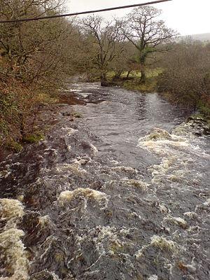 River Tavy - The Tavy above Tavistock, on the moor