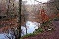River Ayr In Winter - geograph.org.uk - 1126703.jpg