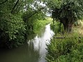 River Cam near Barrington - geograph.org.uk - 878774.jpg