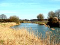 River Nene at Ferry Meadows - geograph.org.uk - 162157.jpg