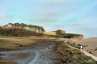 River Otter, Devon - The tidal estuary of the Otter. The river flows left to right, in front of the distinctive hill. The marsh (foreground) is separated from the sea by a steep pebble bar (right).
