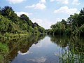 "River Wye at ""The Weir "" NT Gardens, near Kenchester - geograph.org.uk - 25263.jpg"