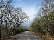 Road to Brasstown Summit