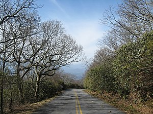Georgia (U.S. state) - Road to Brasstown Bald