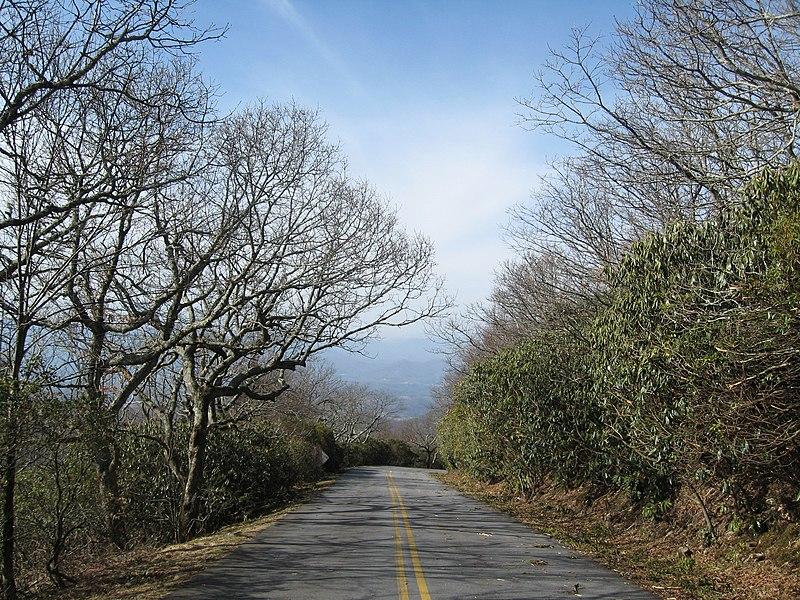 File:Road to Brasstown Summit.jpg