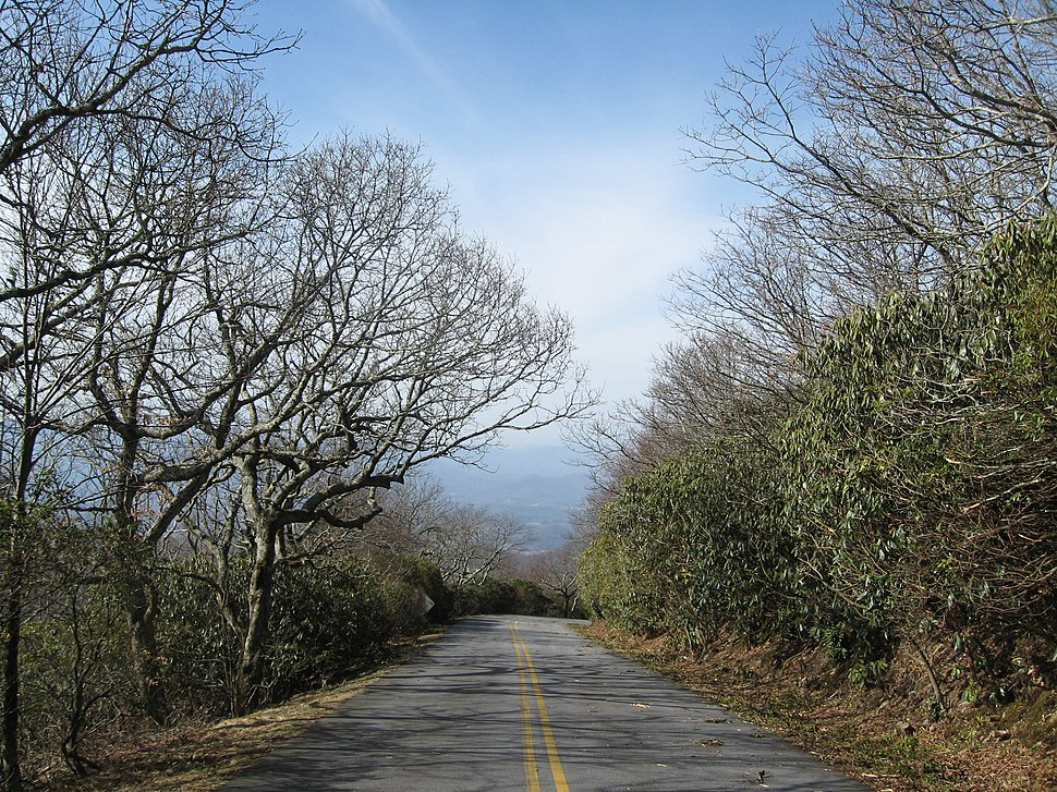Road to Brasstown Summit
