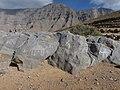 Rock art on Jebel Jais.jpg